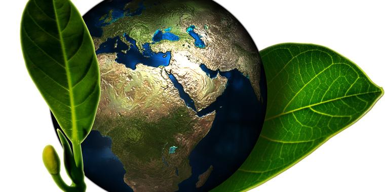 terra e natura